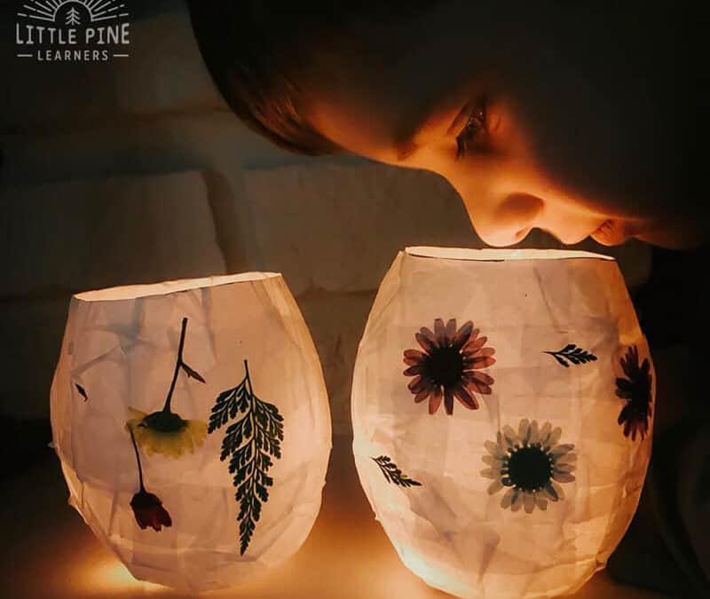 Nature Lanterns