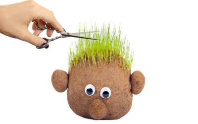 Grass Head Person