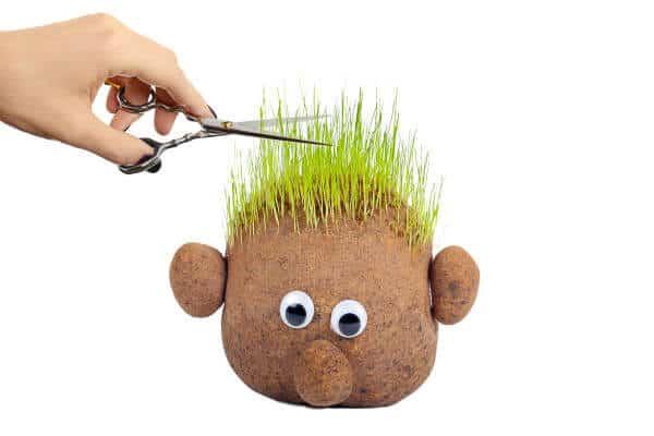 Grass Head Person